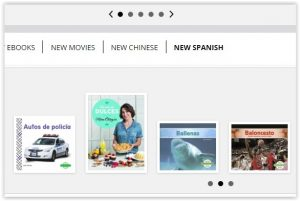 Screenshot of new spanish books carousel on website..