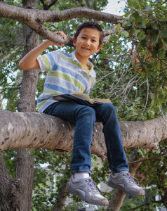 Boy in tree enjoying a library book.